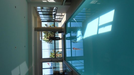 Oceana Palms Luxury Guesthouse : indoor pool - with a view
