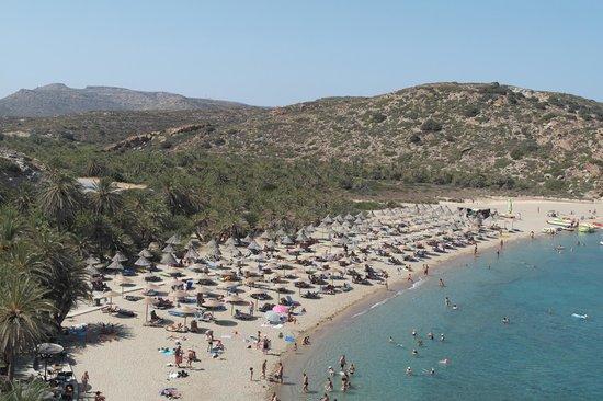 Ariadne Beach: Palm beach of Vai