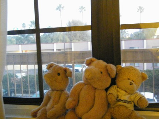 La Quinta Inn Bakersfield South : checking out the window view