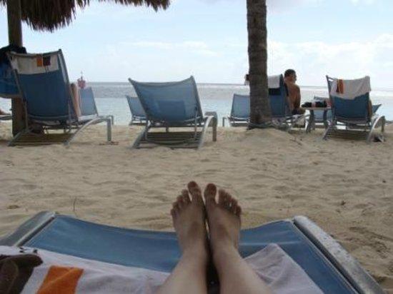 Renaissance Curacao Resort & Casino: White sand, palm trees, sun...