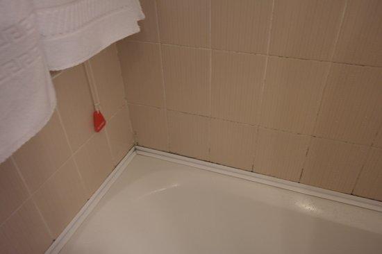Hotel Sirius: Bath