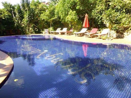 Spring Valley Resort: Nice swimming pool