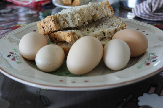 Barcoos Farmstays Bathurst: Freshly collected eggs and Elaine's home baked bread.