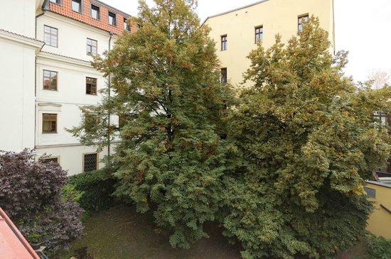 Residence Porta Aurea : the garden view from apt 2