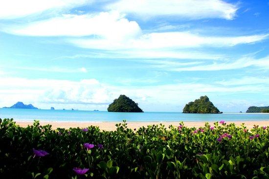 Srisuksant Resort: Пляж
