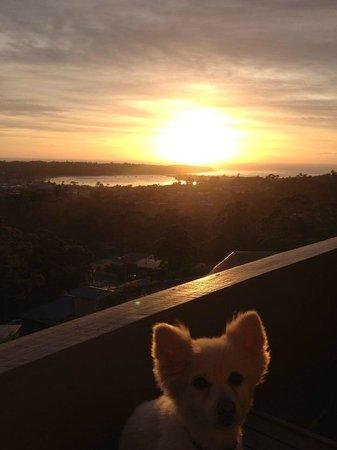 Hillcrest Motor Inn: Sunrise view from my room.