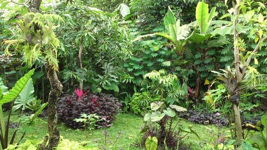Prapen Bungalows: 庭