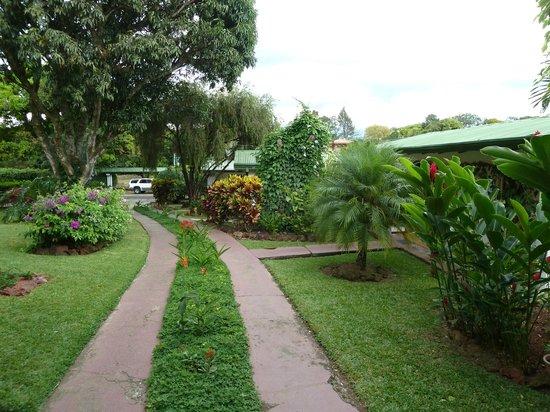 Hotel La Rosa de America: Jardin
