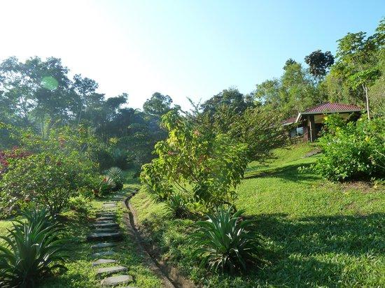 La Cacatua Lodge: Le jardin