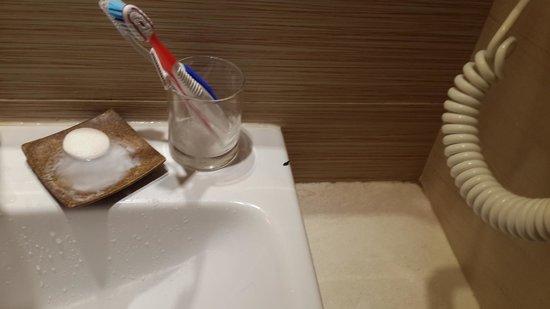 Skylark Hotel: Rat dropping at bathroom