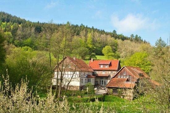 Blick aus dem fenster land  Blick aus dem Fenster vom Bett aus - Bild von Landhaus Bärenmühle ...