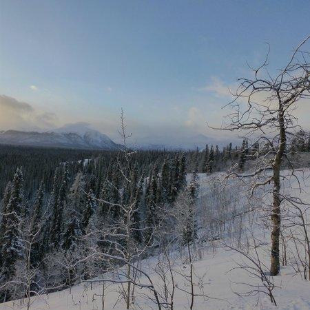 Annie Lake Cabins: Views