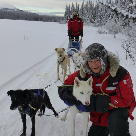 Annie Lake Cabins : Dog Sledding