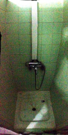 Hostal Casa de Huespedes San Fernando : lousy shower facilities, no cleaning whatsoever.
