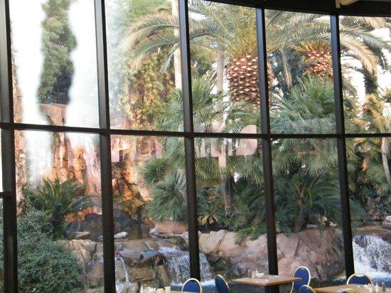 Paradise Garden Buffet: seating area view