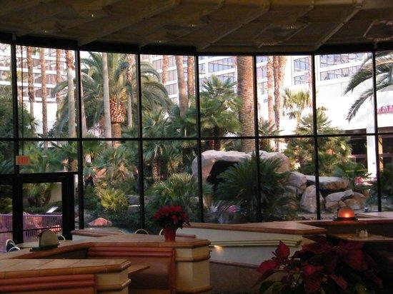 Paradise Garden Buffet: seating area