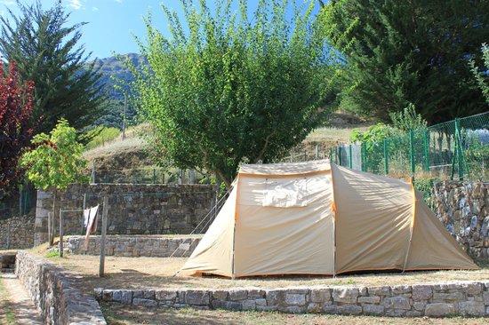 Camping La Viorna : emplacement