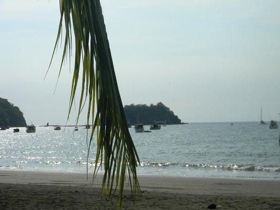 Hotel Coco Palms: playa de coco
