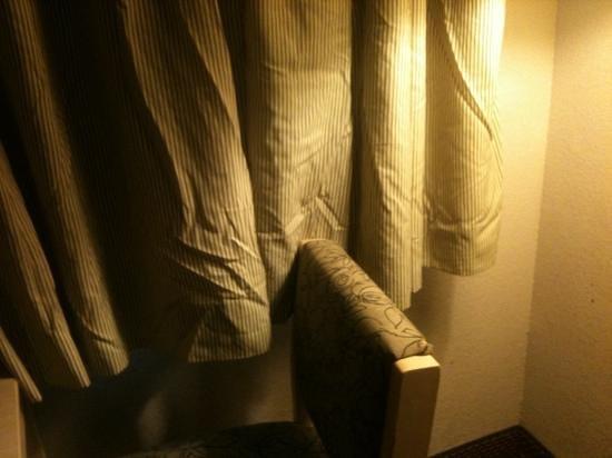 Baymont Inn & Suites Tampa Near Busch Gardens: Curtains - never seen an iron!