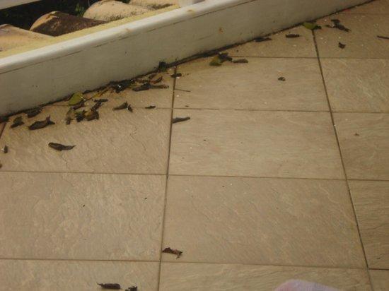 Posada Villa Mercedes: el balcón no tiene buena salida de agua se inundó todo