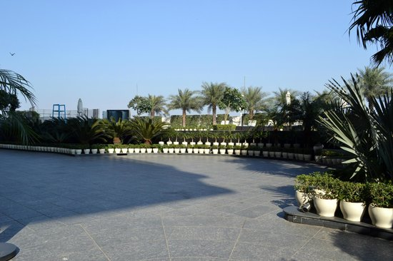 Crowne Plaza New Delhi Rohini: Well maintained poolside garden