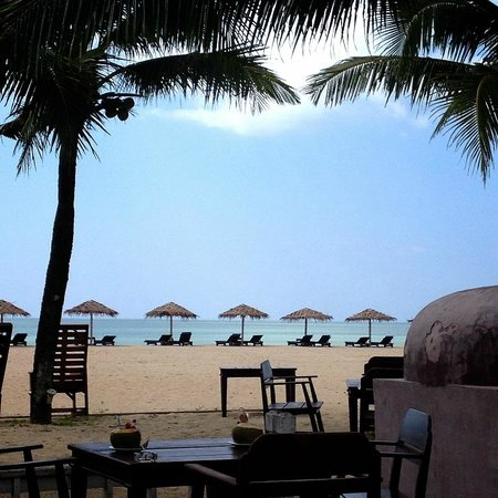 The Kib Resort & Spa: The best beach