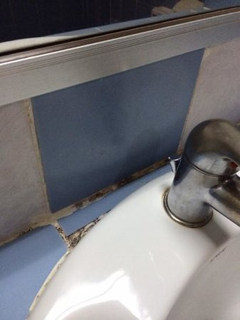 R.S. Hotel : Mould in washbasin