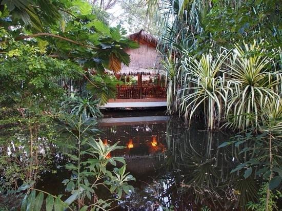 Secret Garden Chiang Mai: Secret Garden