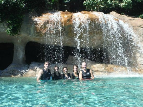 Discovery Cove: A great family day out