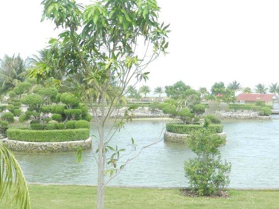 Bintan Sayang Resort : Nice Scenery