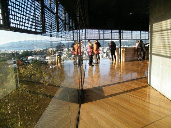 de Young Museum views