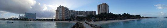 Divi Aruba Phoenix Beach Resort: Divi Phoenix