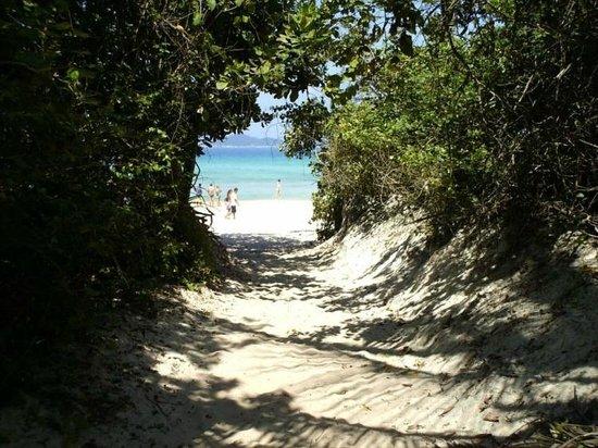 Lopes Mendes Beach: Chegada