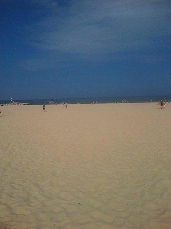Holland State Park Beach : wide beach