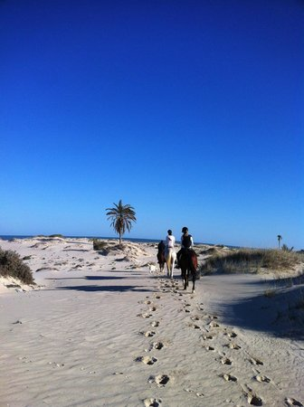 Royal Carriage Club Riding School: beach promenade