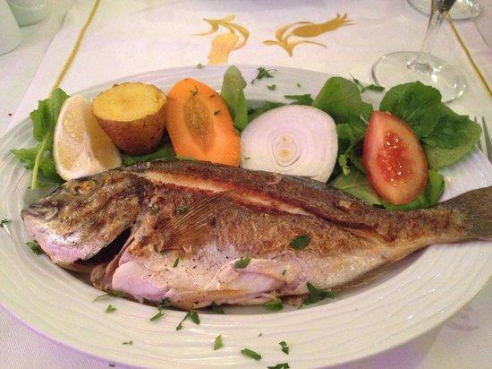 Sultanahmet Fish House : orata