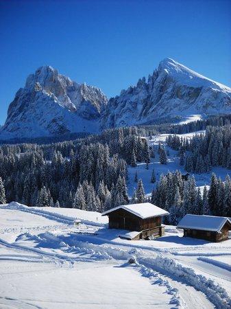 Hotel Saltria - true alpine living: Dio c'e'