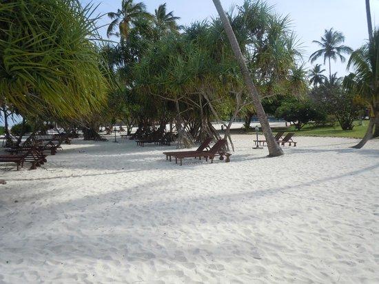 Neptune Pwani Beach Resort & Spa: Beach chairs ate the beach and pool