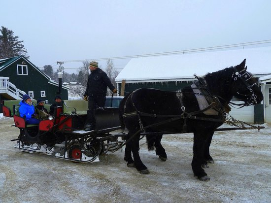 Vermontology Guided Day Tours: Customers from Australia enjoying a horse sled ride- Vermont Tours