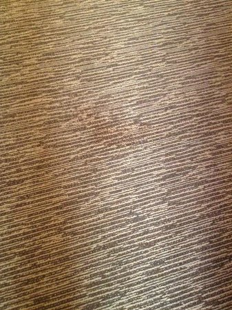 Four Points by Sheraton San Jose Downtown: Stain on the the carpet in the room