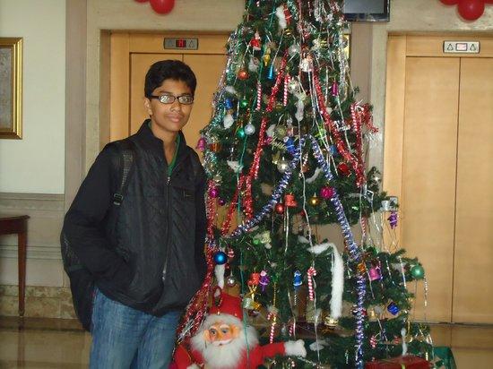 Park Prime Hotel Jaipur : ambience