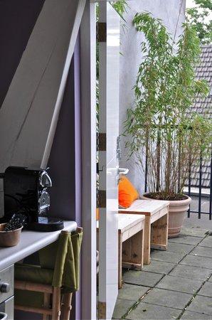 B&B 180 Graden: terrace