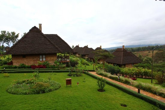 Neptune Ngorongoro Luxury Lodge : view from the restaurant