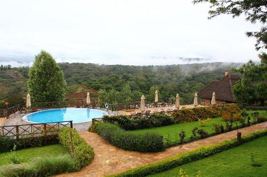 Neptune Ngorongoro Luxury Lodge : the pool