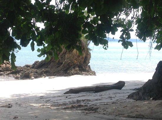 Parque Nacional Curu : Einsamer Strand