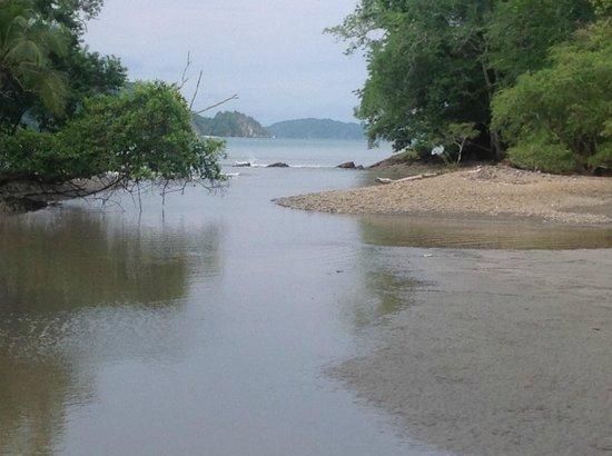 Parque Nacional Curu : Fußweg durch Parque Curú, Blick auf den Golf von Nicoya