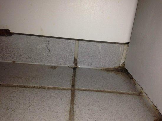 Ibis Hyeres Plage Thalassa: Sous le lavabo