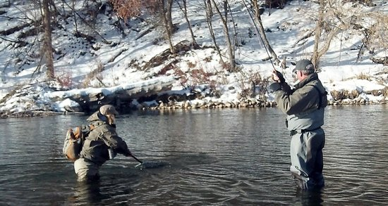 Park City On The Fly : Bringing in a Brown