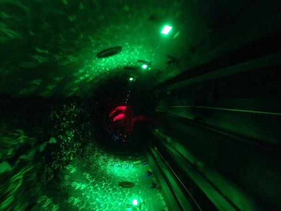 Bund Sightseeing Tunnel : Ça n'arrête pas! Génial !