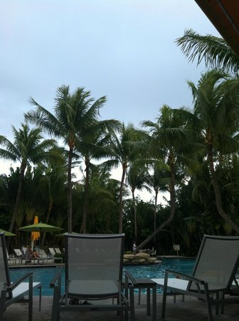 The Inn at Key West: Beautiful trees around the pool